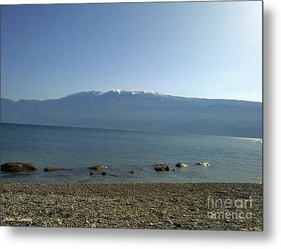 Metal Print featuring the photograph Tranquility by Ramona Matei