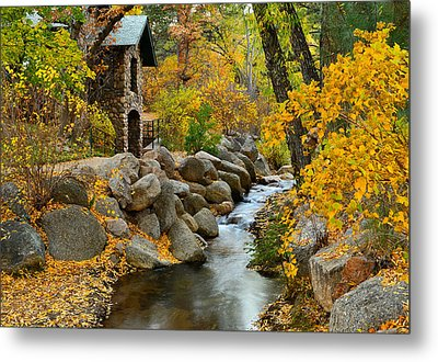 Tranquility Metal Print by Tim Reaves