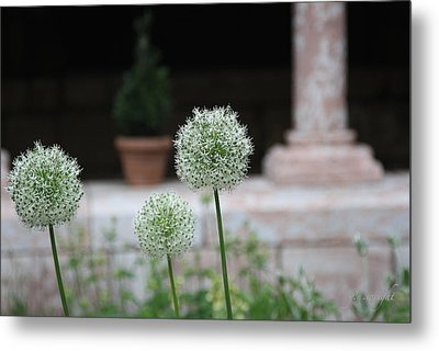 Tranquility Metal Print by Yvonne Wright