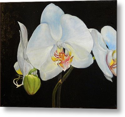 Metal Print featuring the painting Translucent Orchids by Sandra Nardone