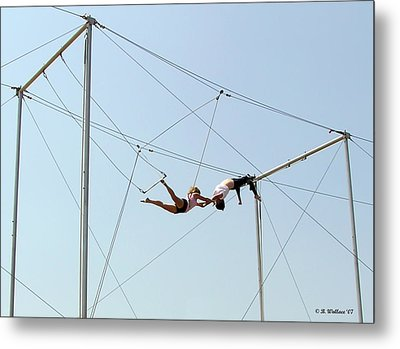 Trapeze School Metal Print by Brian Wallace