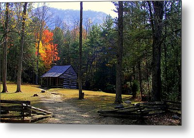 Traveling Back In Time Metal Print by Karen Wiles