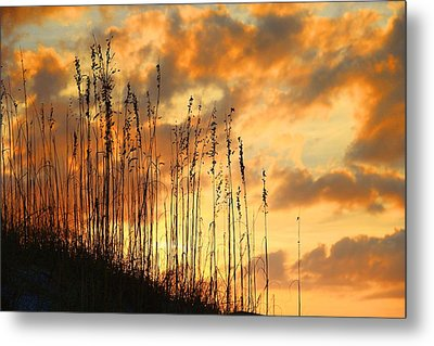 Metal Print featuring the photograph Treasure Island Sunset by Oscar Alvarez Jr