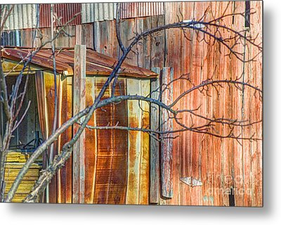 Tree And Rust Metal Print by Jim Wright