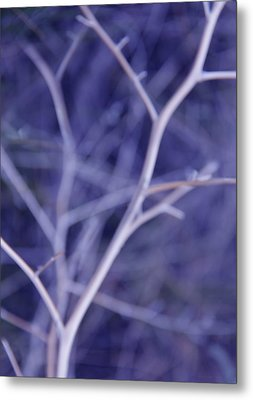 Tree Branches Abstract Lavender Metal Print by Jennie Marie Schell