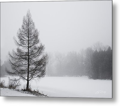 Tree By The Snowy Lake Metal Print