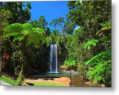 Tree Fern And Waterfall In Tropical Rain Forest Paradise Metal Print