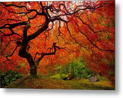 Tree Fire Metal Print