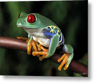 Tree Frog Metal Print by Cole Black