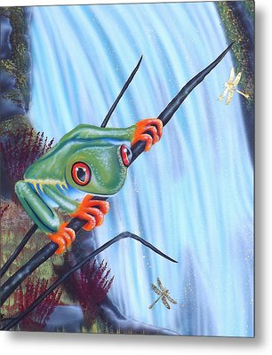 Tree Frog Metal Print by Darren Robinson