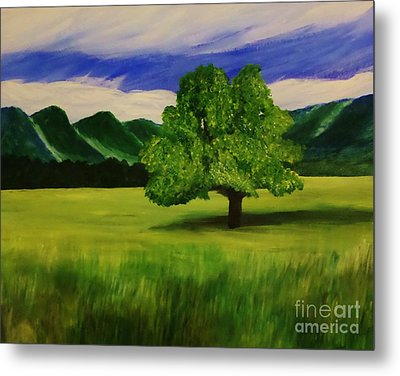 Tree In A Field Metal Print by Christy Saunders Church