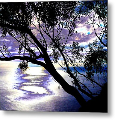 Tree In Silhouette Metal Print