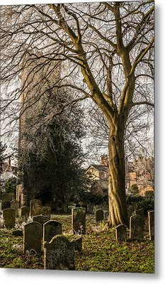 Metal Print featuring the photograph Tree In St Mary Magdalene's Church Yard by David Isaacson