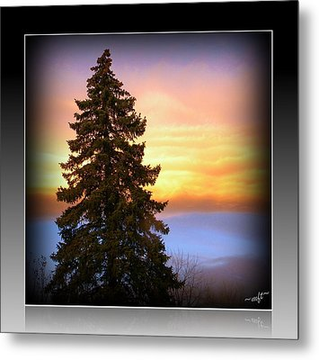 Tree In Sunrise Metal Print by Michelle Frizzell-Thompson