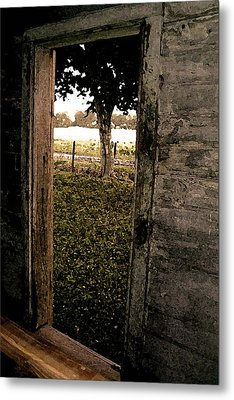 Tree In The Window Metal Print