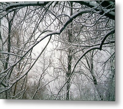 Tree Lace Too Metal Print by Desline Vitto