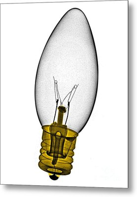 Tree Light Bulb X-ray Metal Print by Bert Myers