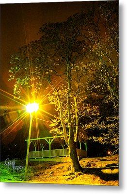 Metal Print featuring the photograph Tree Lights by Glenn Feron
