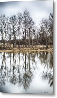 Metal Print featuring the photograph Tree Line In Winter  by Yvonne Emerson AKA RavenSoul