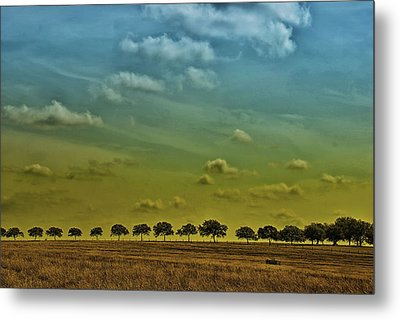Metal Print featuring the photograph Tree Line by Susan D Moody