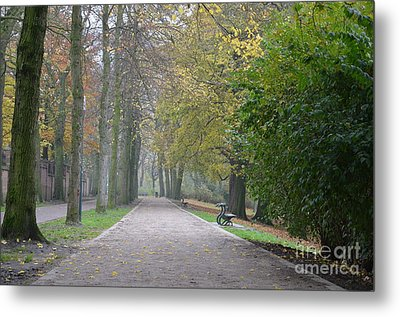 Metal Print featuring the photograph Tree Lined Path In Fall Season Bruges Belgium by Imran Ahmed