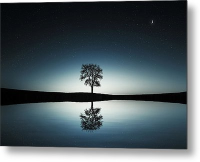 Tree Near Lake At Night Metal Print