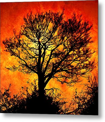 Metal Print featuring the digital art Tree Of Fire by Persephone Artworks