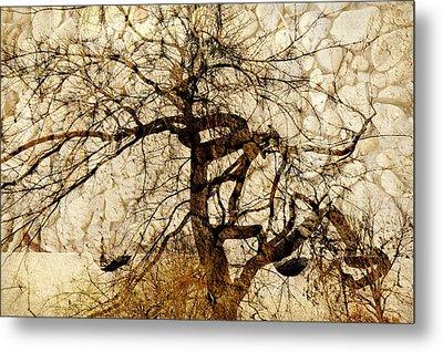 Tree Of Life  Metal Print by Ann Powell