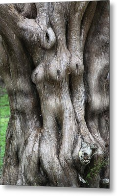 Tree Of Souls Metal Print