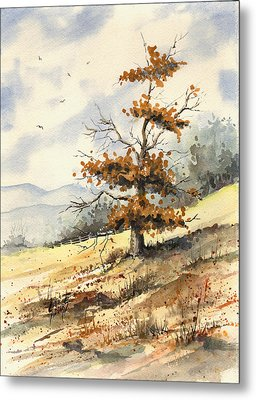 Tree On A Hillside Metal Print by Sam Sidders