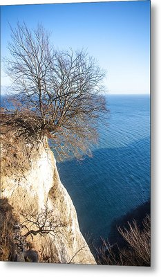 Tree On Chalk Cliff Metal Print by Ralf Kaiser