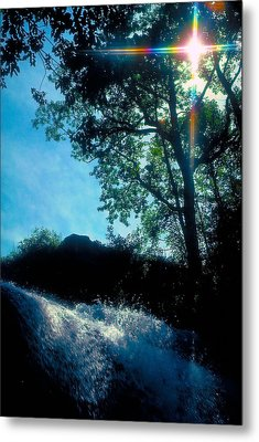 Tree Planted By Streams Of Water Metal Print by Marie Hicks