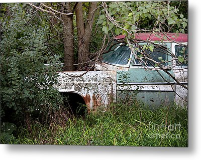 Tree-powered Desoto Metal Print by Rebecca Davis