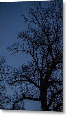 Tree Reaching For The Moon Metal Print