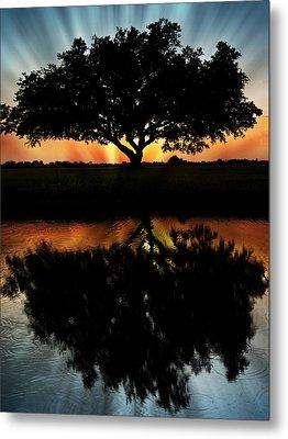 Tree Reflection Metal Print by Regina  Williams