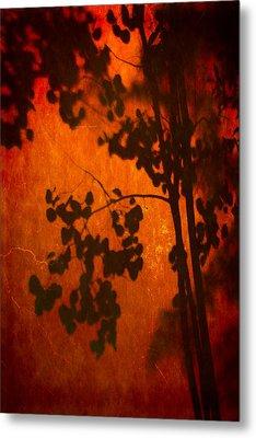 Tree Shadow On Fiery Wall Metal Print