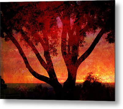 Tree Silhouette In Sunset Abstraction Metal Print