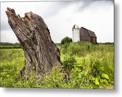 Tree Stump And Barn - New York State Metal Print by Gary Heller