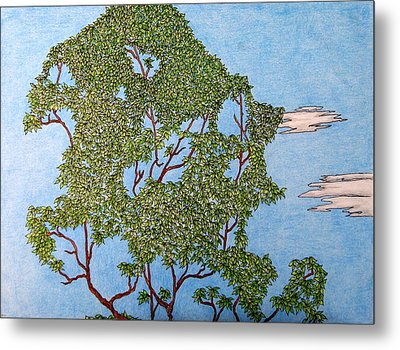 Tree Top 1 Of 3 Metal Print