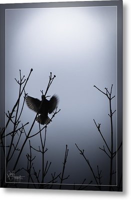 Metal Print featuring the photograph Tree Top Landing by Glenn Feron