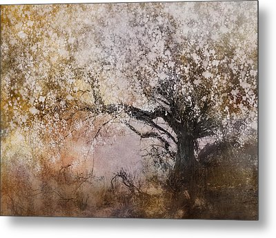 Tree Whispers Metal Print by Amy Weiss