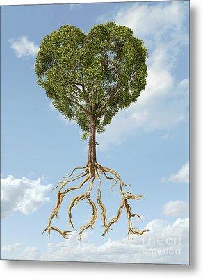 Tree With Foliage In The Shape Metal Print by Leonello Calvetti