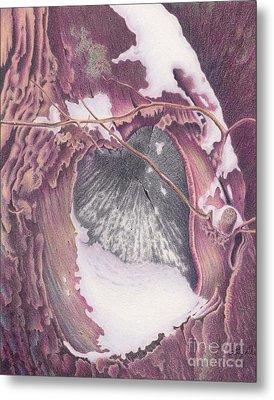 Treeheart Metal Print by Elizabeth Dobbs