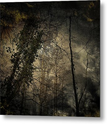 Trees 4 Metal Print by Andy Walsh