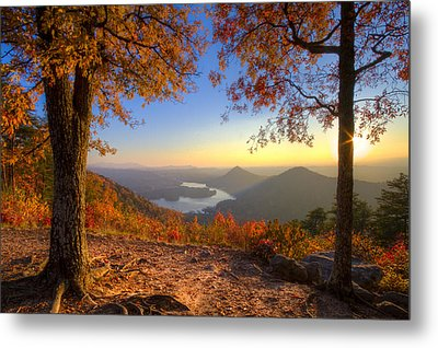 Trees Aflame Metal Print by Debra and Dave Vanderlaan