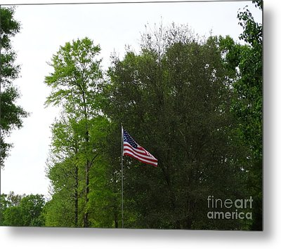 Trees And Flag Metal Print by Joseph Baril