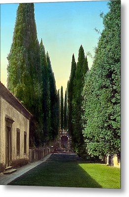 Trees And Grotto Metal Print by Terry Reynoldson