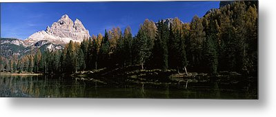 Trees At The Lakeside, Lake Misurina Metal Print by Panoramic Images