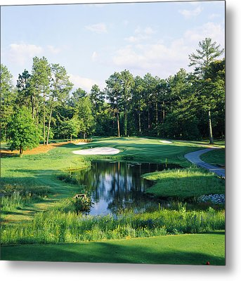 Trees In A Golf Course, Pine Needles Metal Print by Panoramic Images