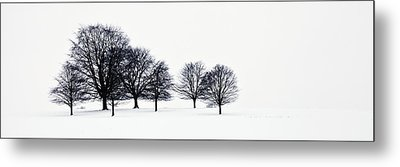 Trees In A Snowy Field In Chatsworth Metal Print by John Doornkamp